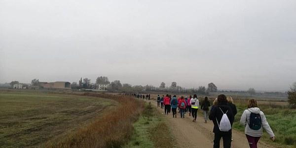 Caminada solidària per la Marató de TV3 (2018)