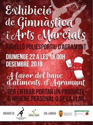 Exhibició gimnàstica 22.12.19