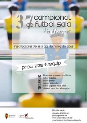 37è campionat futbol sala estiu