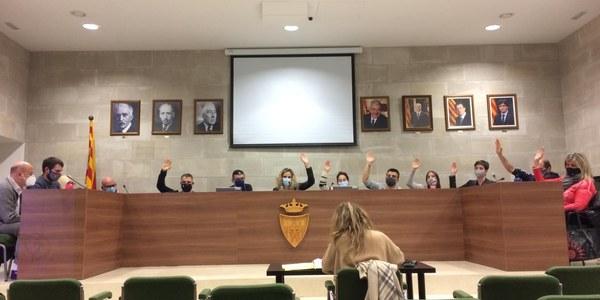 Última sessió plenària de l'any 2020