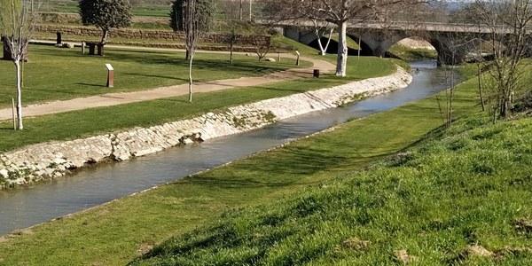 El Riu Sió al seu pas per Agramunt a la zona del Parc de Riella