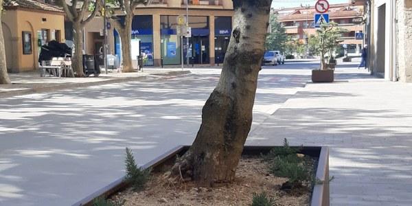 Noves jardineres plaça del Pou