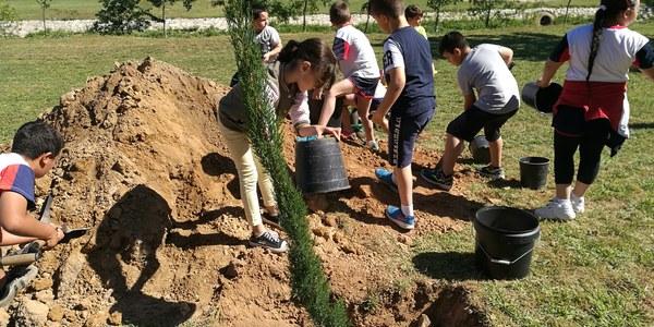 Plantada d'arbres Agramunt
