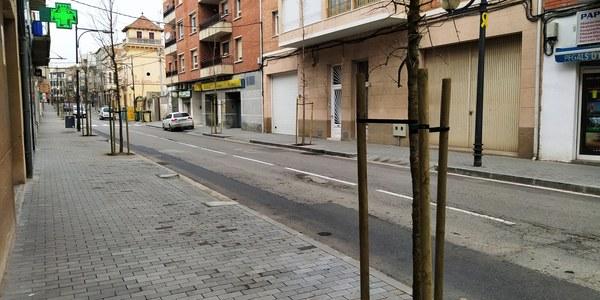 Nou arbrat de l'Avda. Jaume Mestres