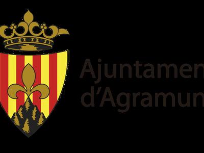 Sessió ordinària Ajuntament Ple