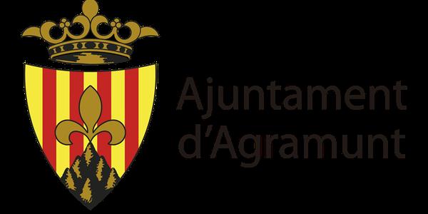 Sessió ordinària Ple Ajuntament 29.06.2020