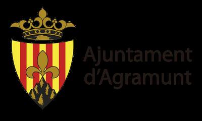 Sessió ordinària de l'Ajuntament Ple