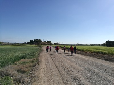 Una caminada tanca el programa d'activitats per celebrar el DMAF a Agramunt